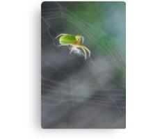 Green Spider 1.0 Canvas Print