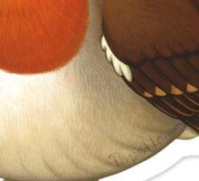 Chubby Erithacus Sticker