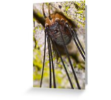 harvestmen Greeting Card