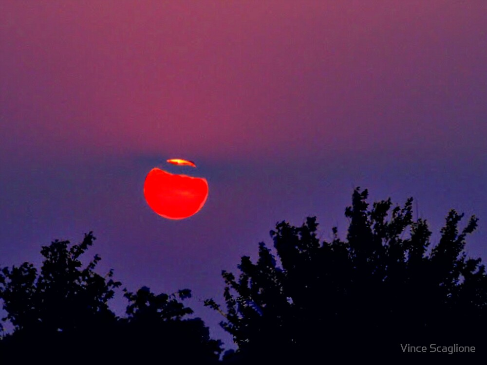 Vivid Red Ball by Vince Scaglione
