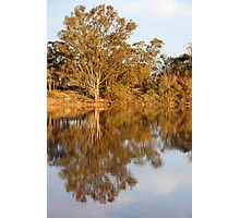 River Murray Reflections Late Afternoon Photographic Print