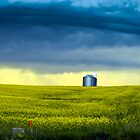 Alberta by Annie Lemay  Photography