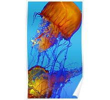 Abstract Floating Jelly fish Poster
