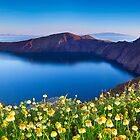 Santorini Spring by Ben Goode