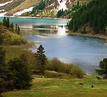 Glacier National Park 15 by Miles Glynn