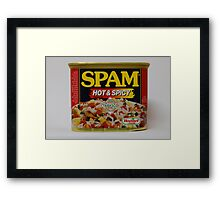 no added inches promised Framed Print