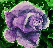 Dramatic Lavender rose, watercolor by Anna  Lewis