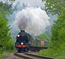 Lord Nelson - The Watercress Line by Colin  Williams Photography
