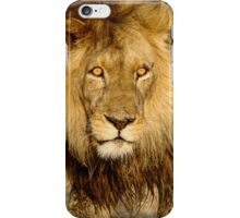 The stare down iPhone Case/Skin