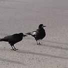 Rooks Jackdaws And Shadows by ArtOfE