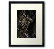 Raw Bog Wood Knot Image Framed Print