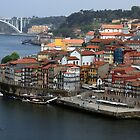 Downtown area of Porto by Mauro Rodrigues