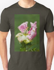 dried peony in the garden T-Shirt