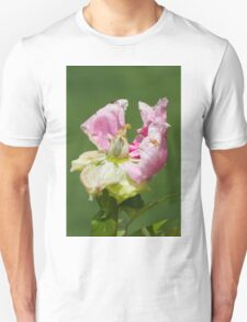 dried peony in the garden Unisex T-Shirt