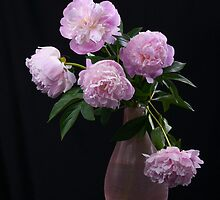 Still life with beautiful pink  peonies  by torishaa