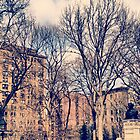 Washington Square Park - Northwest Corner by SylviaS