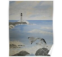 Seagull Lighthouse Poster
