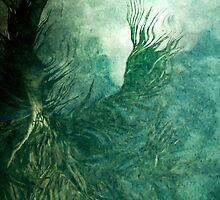 Dream Deep by Susana Weber