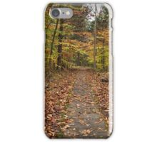 Rim Rock Path iPhone Case/Skin