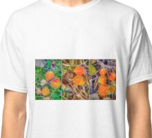 Summer Is Over Classic T-Shirt