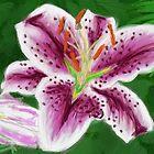 Lily by fliberjit