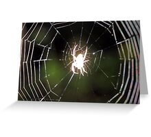 Ghost Spider! Greeting Card