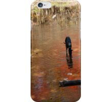 Bones at the River iPhone Case/Skin
