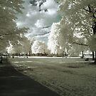 Stilton On Grass by Gary Cummins