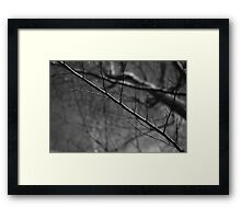 it seems just awful. Framed Print