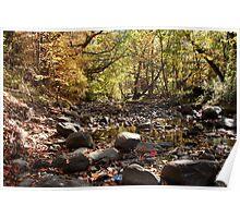 VanRaalte Farms Trails River Poster