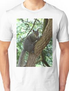 Grey Squirrel (oil painting effect) T-Shirt
