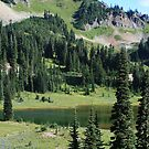 Lake Tipsoo by Dave Davis