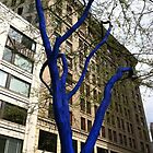 Blue Trees - Konstantin Dimopoulos, Artist by Julie Van Tosh Photography