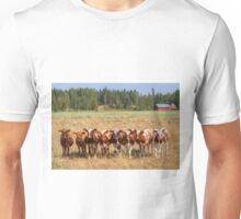 Young calves on pasture Unisex T-Shirt