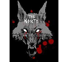 The North Photographic Print