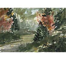 Landscape 6-1-12 Photographic Print