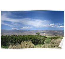 Sagebrush And Mountains Poster