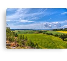 The Field Scenery Canvas Print