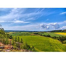 The Field Scenery Photographic Print