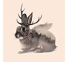 Wolpertinger Photographic Print