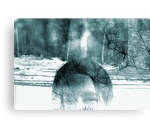 3 Images RAW combined Canvas Print