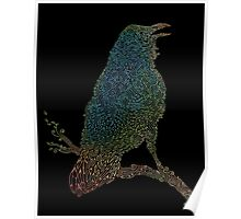 The Iridescent Raven Poster