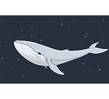 The Whale In The Night Photographic Print