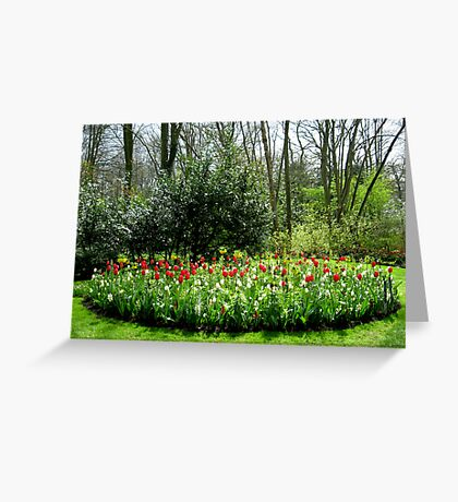 Reds in the Bed - Tulips in the Keukenhof Gardens Greeting Card