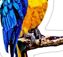 Parrot #1 Sticker