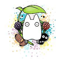 Chibi Totoro Photographic Print