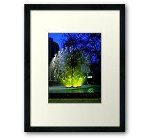 water ball Framed Print