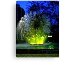 water ball Canvas Print