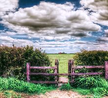 Over the Stile by Vicki Field