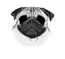 Ghost Pug Photographic Print